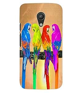ColourCraft Coloful Parrots Design Back Case Cover for MOTOROLA MOTO G2