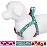 Blueberry Pet Step-in Harnesses Pink Flamingo on Light Emerald No Pull Dog Harness Adjustable , Nylon 2cm Medium, Matching Collar & Lead Available Separately