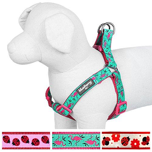Blueberry Pet Step-In Geschirre für Hunde Pink Flamingo auf Hell-Smaragtgrün Hundegeschirr mit Zugentlastung Verstellbar, Nylon 51-66cm Brust, Passender Hundehalsband & Hundeleinen erhältlich separate (Herz-dog Harness)