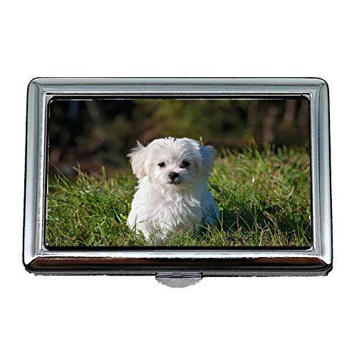 Custodia/scatola porta sigarette, Cane Young Dog Small Dog Maltese White Puppy Young, Porta biglietti da visita Porta biglietti da visita in acciaio inossidabile