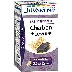 JUVAMINE Charbon + Levure Gaz Intestinaux 45 Gélules