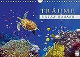 Träume unter Wasser (Wandkalender 2018 DIN A4 quer): Eindrücke aus der Unterwasserwelt (Monatskalender, 14 Seiten ) (CALVENDO Tiere) [Kalender] [Apr 01, 2017] Melz, Tina