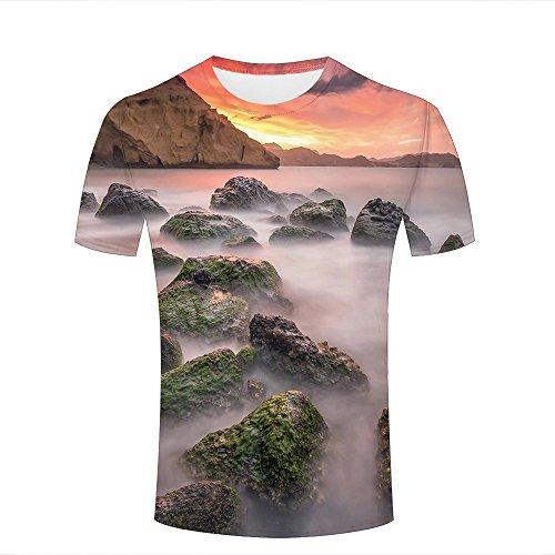 Aeropostale Rock (Herren 3D Casual T-Shirt Mossy Rocks Peculiar Landscape Graphics Short Sleeve Tops M)
