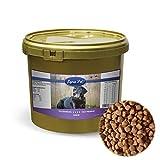Lyra Pet Dog 4 kg Senior im Eimer Premium Hundefutter ältere Hunde ab 7 Jahre