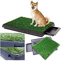 Sailnovo Inodoro para Perros Césped Interior Orinal Perro Almohadilla de Entrenamiento de Hierba para Mascotas Doméstico 63 x 50 x 7 cm