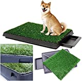 Sailnovo Toilette per Cani con Prato Sintetico, 63 x 50 cm, per Cani e Cuccioli, per Animali Domestici, per Cani di Piccola Taglia e Grande età