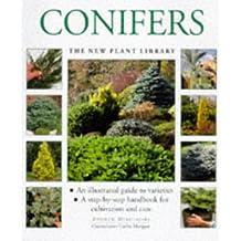 Conifers (New Plant Library) by Andrew Mikolajski (2000-01-03)