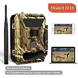 3G Wildkamera 3G Überwachungskamera (3G GPRS GSM) mit FOTOAPP, Jagdkamera, 2018 Version Kamera (3G Wildkamera)