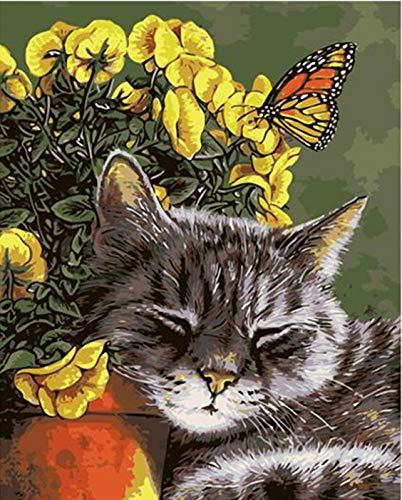 Suubboo Malen Nach Zahlen Katze Schmetterling DIY Malerei Nach Anzahl Moderne Wandkunst Handgemaltes Ölgemälde Acrylfarbe Auf Leinwand 40X50Cm