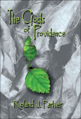 The Gods of Providence Cover Image