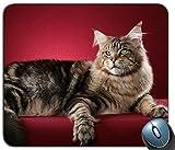 Mauspad Gaming-Maus-Matte Gel-Gummi für PC, Katze Maine Coon Fluffy 93064 Personalisierte Rechteck-Mausunterlage, Gedruckte Rutschfeste Gummi Bequeme Kundenspezifische Computer-Mausunterlage