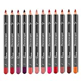 12 Farben Lip Liner Bleistift Set, FOXTSPORT Langlebige Matte Lippenstift, Wasserdicht und Glatte Lipliner Pen Set