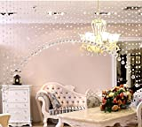 5M Türvorhang Kristall Girland Crystal Clear Acrylic Bead Garland Durchsichtig Hochzeit Partei Dekor DIY Dekor Anhänger Perlenvorhang (mit Kristall Kugel)