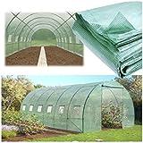 Probache - Telo di ricambio per serra da giardino, a tunnel, 6 x 3 x 2 m