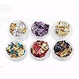 6 Pcs/Set Femmes Brillant Feuille Couleur Nail Stickers Shell Poudre Manucure DIY,Autocollant d'ongle d'or et d'argent feuille d'étain 6 canettes (6g, Multicolor)