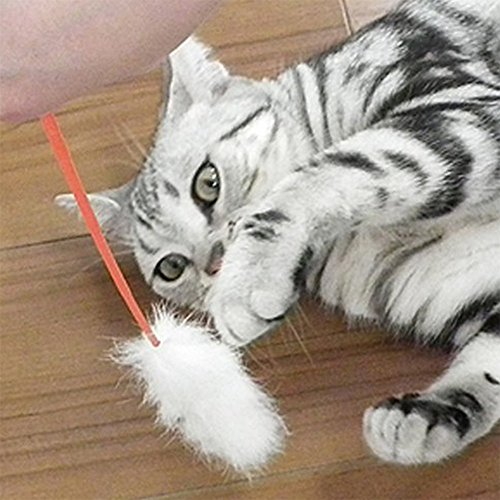 Hosaire 5 Pieza Divertido gato de Classic plumas Funny Pet Cat Play Sticks Varilla gato juguete con Bell (color al azar)