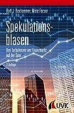 Spekulationsblasen. Den Turbulenzen am Finanzmarkt auf der Spur