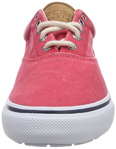 Sperry Top-Sider Striper Cvo, Sneakers basses homme Rouge - Rouge
