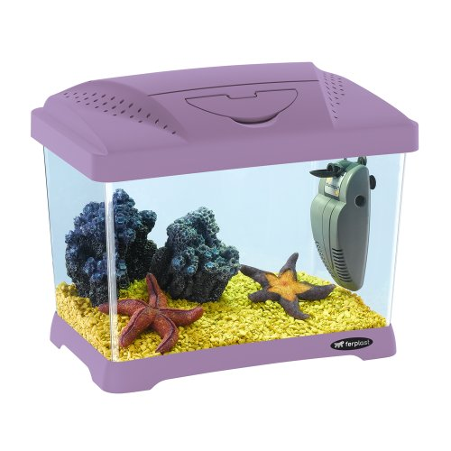 Ferplast 65010019 Capri Junior Aquarium, 41 x 26.5 x 34 cm, 21 L, violett