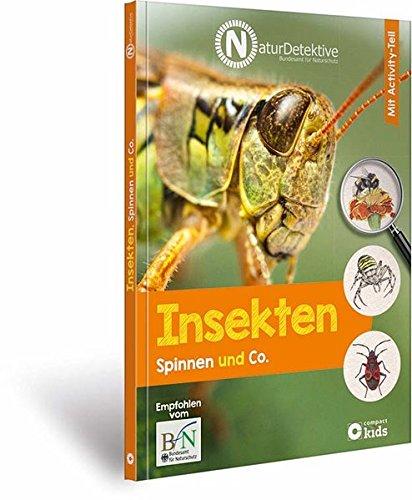 Insekten, Spinnen und Co. (Naturdetektive)