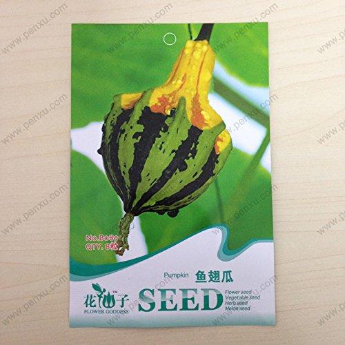 pacchetto-ornamentali-piante-da-frutto-semi-originali-pinna-di-squalo-melone-semi-di-zucca-la-fiorit
