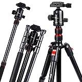 Amzdeal Treppiede Fotocamera da Viaggio 56-160 cm, Treppiede in Alluminio Leggero Pieghevole e Compatto con Testa a Sfera e Borsa per Fotocamera Nikon Sony DSLR