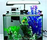 YANFEI 32L Desktop Eco planta interna de energía de iluminación de acuario transparente de escritorio Creative regalo de tanque de pescado