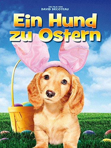 Ein Hund zu Ostern
