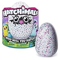 Hatchimals Hatching Egg - Assorted