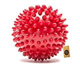 #6: The Dogs Company Natural Rubber Spiked Ball Dog Chew Toy, Ball Dog Toy, 3 inches, Colour May Vary