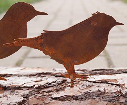 Dekostüberl Rostalgie Edelrost 5er Set Vögel mit Schraubgewinde 15x10cm für Holz Zaunfigur- Inkl. Herz 8x6cm