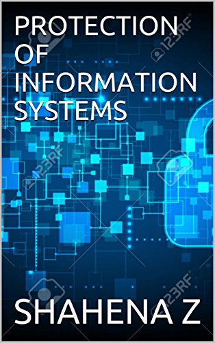 PROTECTION OF INFORMATION SYSTEMS (English Edition)