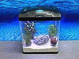 Hr-320 schwarz Nano Aquarium Komplettaquarium Mini Aquarium Filteranlage Nanoaquarium Komplett Filter Beleuchtung