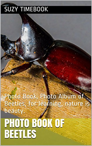 photo-book-of-beetles-photo-book-photo-album-of-beetles-for-learning-nature-is-beauty-english-editio