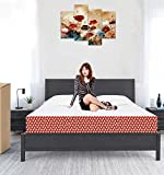 Aart Memory Foam Orthopedic Mattress King Bed Size Foldable (72 x 72 * 8 Inches)