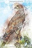 Krafttier Falke - Notizbuch mit Falken Bild: Notizbuch / Malbuch blanko mit 120 Seiten für Greifvogel Liebhaber