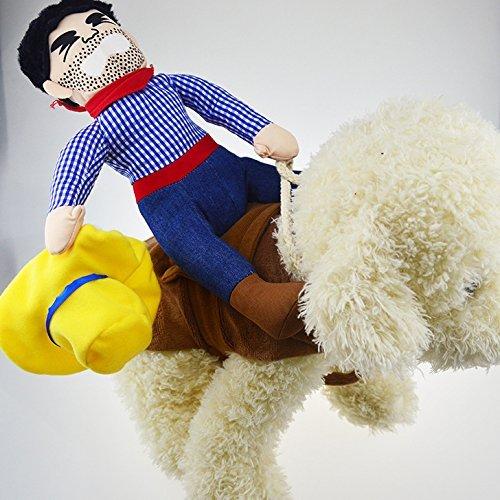 owboy Funny Kostüm Hund Riders Kleidung (mittel) (Mittelgroße Hund Halloween Kostüme)