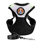Rrimin Pet Dog Collars Puppy Cat Leash Vest Mesh Breathe Adjustable Harness Chest Braces (Black, S)