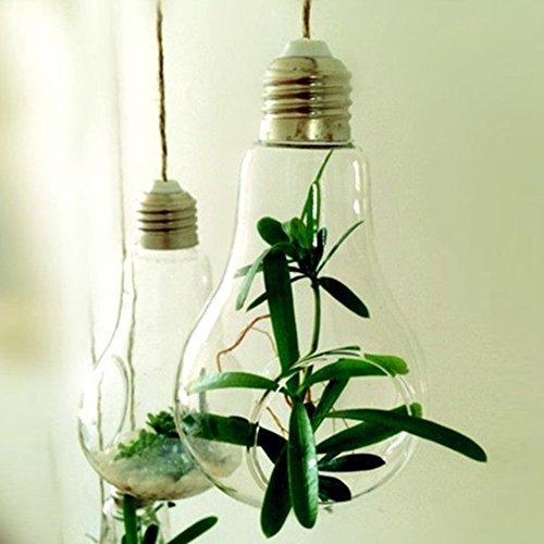 soledi-design-fantastico-portafiori-pianta-in-vetro-vaso-da-fiori-sospeso-a-forma-di-bulbo-trasparen