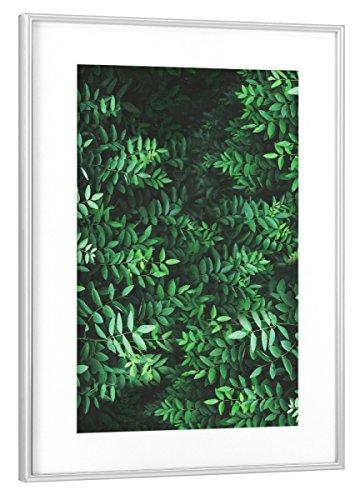artboxONE Poster mit Rahmen Silber 45x30 cm Tropical Forest von Sail and Swan - gerahmtes Poster