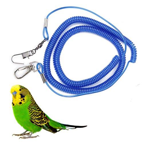 laisse-corde-de-formation-pour-oiseaux-perroquet-inseparable-de-fischer-couleur-aleatoire