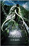 Joshua par Gres