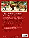 Basistraining für Pferde: Richtig ausbilden · Problemen vorbeugen - 2
