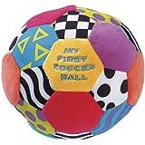 Playgro - Mi primer balón de actividades (0111783)