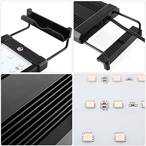 cd5ee93754c Amzdeal Lámpara Acuario Luces Impermeable LED para Acuarios de Peces y  Estanques con Control Remoto (