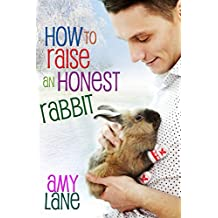 How to Raise an Honest Rabbit (Granby Knitting Series Book 2) (English Edition)