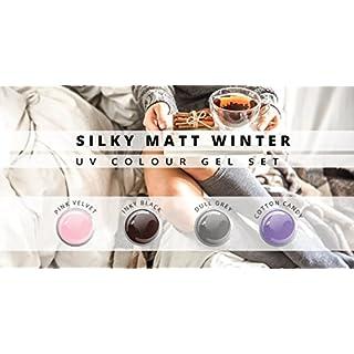 N&BF UV Farbgel Set | 4 x 5ml Colour Gel Silky Matt Winter | Vier kühle Töne im Sparset | Colorgel mittelviskos | Made in EU | Nagelgel div. Farben | Farbgel ohne Säure + selbstglättend für Nail Art