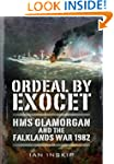 Ordeal by Exocet: HMS Glamorgan and t...
