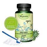 VEGAVERO ProBio Kulturen für KINDER | Mit Bio-Inulin | 100% BIO | Pulver - leicht einzunehmen | Ohne Zusatzstoffe | Laborgeprüft | Mit Milchsäurebakterien | 75 g | Vegan