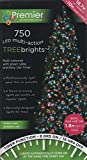 Premier Decorations - 750 Multi Action TreeBrights LED Lights with Timer - Multi-Colour